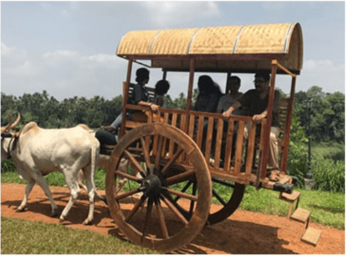 Bullock Cart Ride at CampHalli