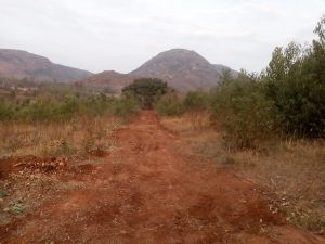 Off road in NimaiValley
