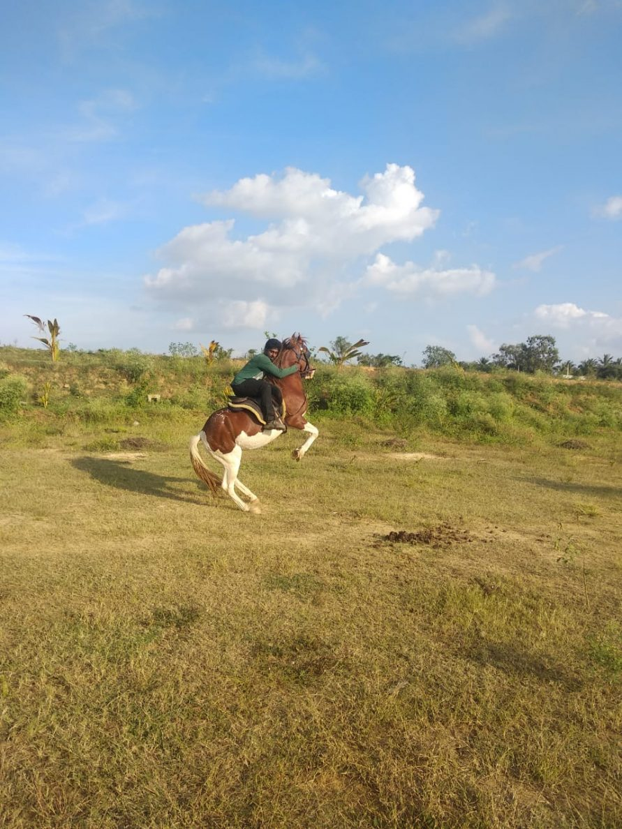 Horse riding in NimaiValley