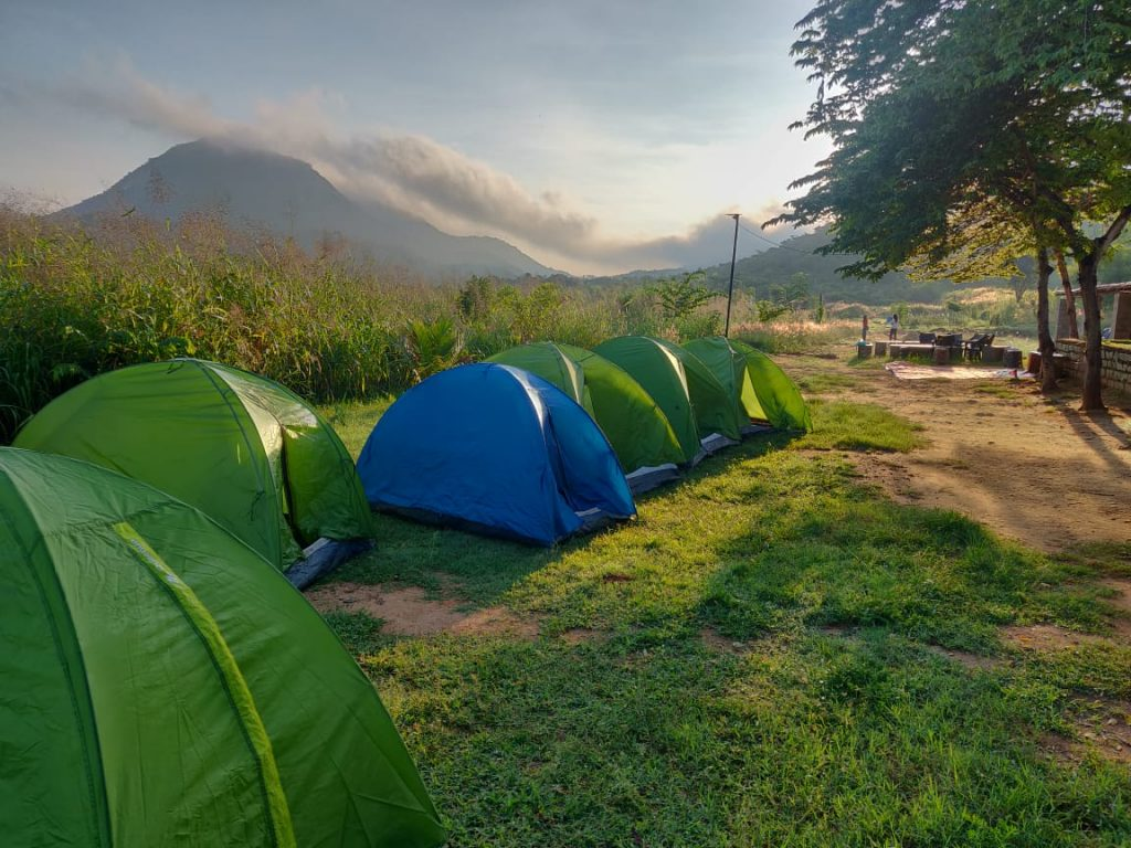 Camping in the Farm